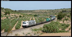 TECO en Els Omellons (javier-lopez) Tags: ffcc railway train tren trenes adif renfe mercancas teco contenedor contenedores 253 traxx sgs sgss mmc tcs tramesa teqsa torrelavega zaragozaplaza constant elsomellons 25062016