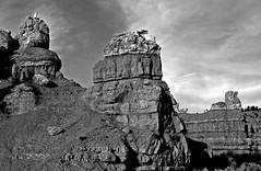 American Sphinxes - Dixie National Forest (SCFiasco) Tags: dixienationalforest dixie national forest rock rockformations america usa ut utah stone scfiasco siasoco edsiasoco bw brycenationalmonument nps nationalparservice sphinx