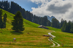 Les randonneurs (Meinrad Prisset) Tags: gruyre districtdelagruyre paysage swissmountains alpessuisses alpes cantondefribourg switzerland suisse schweiz swizzera nikon nikond800 d800 afsnikkor70200f4vr captureone9