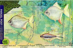 Mailart2016-36 (FarStarr) Tags: postcard postal mailart mailart365 mandyfariello farstarr iuoma swapbot fish plotplan explored