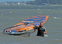 Aug0320a (Mike Millard) Tags: hamworthypark pooleharbour windsurfers