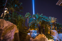 Las Vegas-August 27, 2016-IMG_2146 (ItsCharlieNotCharles) Tags: las vegas buffet city night life lights nightlife lasvegas canon t6i sincity