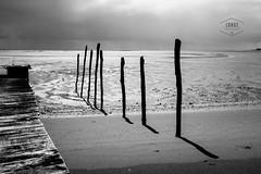 Fort Boyer (Cedpics) Tags: ocean seascape beach nature 17 lowtide fr plage atlantique oléron marée charentesmaritimes fujix100s fortboyer