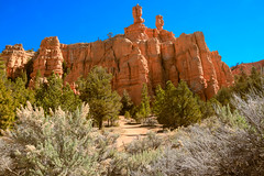 Beautiful Red Canyon (http://fineartamerica.com/profiles/robert-bales.ht) Tags: park blue trees red wild sky orange usa mountains color tourism nature beauty yellow rock stone pine america landscape utah sand sandstone scenery colorful desert outdoor hiking scenic places tourist panoramic canyon erosion formation trail national geology navajo brycecanyon ponderosa dixie hoodoos iphone rockformation geological redcanyon byway12 desertscape cedarmountain robertbales ofdixienationalforest