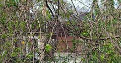 Roundhouse No.30 (Nic2209) Tags: station flickr eisenbahn railway bahn gebäude glas roundhouse schienen 2015 ringlokschuppen lokschuppen bahnschienen eisenbahnschienen nic2209 nikond7200 curry36tourwaa