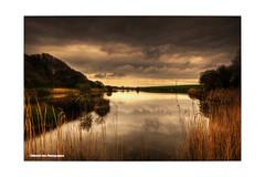 L'tang (The pond) (objectiffoto) Tags: color water pond nikon eau soft bretagne couleur calme tranquilit etang d300 finistere paisible ploumoguer flickrbronzetrophygroup