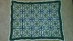 Sarah Carlee (The Crochet Crowd) Tags: crochet mikey cal divadan crochetalong yarnspirations cathycunningham thecrochetcrowd michaelsellick danielzondervan freeafghanpattern mysteryafghancrochetalong freeafghanvideo caronsimplysoftyarn