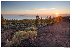 Sonnenuntergang über La Palma (schmilar77) Tags: sonnenuntergang jahreszeit natur himmel filter landschaft sonne wald hitech frühling gegenlicht marke fototechnik ndgrad bildbeschreibung tageszeit tamron1024mmf3545spdiiildaslif 06he 06se