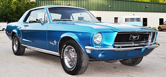 """1968 Ford Mustang • <a style=""""font-size:0.8em;"""" href=""""http://www.flickr.com/photos/85572005@N00/17649373844/"""" target=""""_blank"""">View on Flickr</a>"""