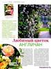 Сад своими руками №6 июнь 2015