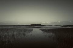 Mono (Gasolin3) Tags: summer reflection water clouds canon landscape day horizon scene monochromatic orivesi 600d