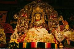 Drepung Monastery  (Captain&Winnie Images) Tags: china travel art statue temple gold golden god buddha traditional religion culture buddhism tibet holy v monastery lhasa dalailama drepungmonastery vsco