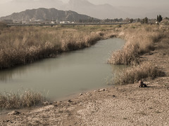 Dried soil right next to river (ErdenizS) Tags: pen river olympus ep3