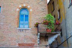 20 (kamalgulzar) Tags: mantova italia mantua italy streetphotography door window