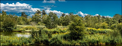 Reifel Bird Sanctuary Pano (Martin Smith - Having the Time of my Life) Tags: ca panorama canada landscape britishcolumbia pano delta reifel reifelbirdsanctuary martinsmith dramaticclouds nikonafsnikkor70200mmf28gedvrii 7imagepanorama nikond750 martinsmith