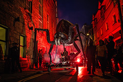 Saruga's giant insects (Sigita JP) Tags: art artfestival giant insects westofireland ireland galway summertime galwayartsfestival2016