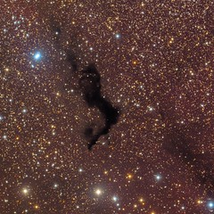 Dark Nebula - Barnard 174 (Herbert Walter) Tags: barnard174 darknebula cepheus astrometrydotnet:id=nova1650071 astrometrydotnet:status=solved