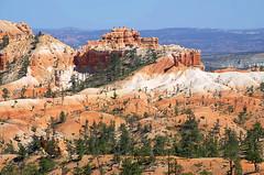 DSC_0621 fairyland trail 850 (guine) Tags: brycecanyon brycecanyonnationalpark rocks trees plants