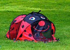 A Mini Tent Vacation . (ikan1711) Tags: park vacation fun picnic funtime tent summerfun redtent localpark minitent kidstent johnlawsonpark parkscenes ladybugtent amblesidewestvancouverbc aminitentvacation cutetent