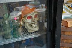 Doesn't Everybody Have a Skull in the Fridge? (BKHagar *Kim*) Tags: shopping skull store fridge junk unique odd thrift refrigerator bkhagar