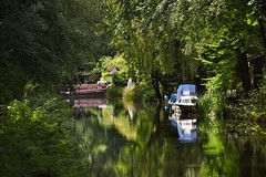Basingstoke Canal Frimley 16 July 2016 006 (paul_appleyard) Tags: uk trees england green water reflections boat canal britain july peaceful scene calm surrey reflected narrowboat bucolic basingstoke 2016 frimley