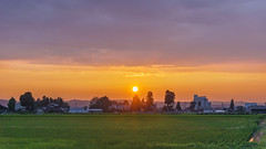 Home also sunset (Nobuyuki Ikeda) Tags: wood sunset sky sun tree japan fog landscape sony  toyama         nanto    nex6