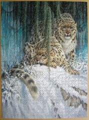 Ghosts in the Moonlight - Snow Leopards (Leonisha) Tags: puzzle jigsawpuzzle schneeleopard snowleopard ceaco
