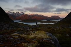 Lofoten (stefandinkel) Tags: stefandinkel olympusomdem1 mft m43 norwegen lofoten moskenesya berge sonnenaufgang sunrise