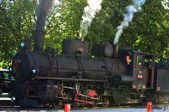 Feistritztalbahn/Bummelzug in Weiz (martinap.1) Tags: bummelzug feistritztalbahn lokomotive zug dampflok weiz train steamengine
