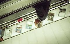 Elervated Flip (Leon.Antonio.James) Tags: 35mm 35mmfilm 38mmf28 analog analogue art beliveinfilm buyfilmnotmegapixels color contaxt2 dustgrainandscratch film filmisnotdead filmisalive filmsnotdead grain gold ishootfilm ilovefilm ifyouleave kodak kodakgold200 leonantoniojames longlivefilm light london lines tones shootfilmstaypoor street carlzeis underground