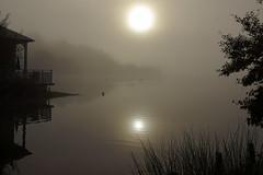 Lac d'Ailette (J N Photography) Tags: jeremynuyten lacdailette lac lake ailette picardie france water paysage landscape fog brume brouillard poselongue longexposure cloud centerparc sonyalpha77 mist sunlight sun dt1650mmf28ssm aurore aine