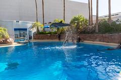 2015 Las Vegas Regional