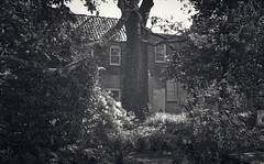 Cemetery Watch (Watermarq Design) Tags: windows blackandwhite cemetery garden southcarolina haunted charleston windowwednesday