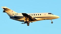 FRA-23.08.2012-019 (mifr1977) Tags: airport frankfurt flughafen spotting fra spotter eddf raytheonhawker800xp goldeckflug oegce