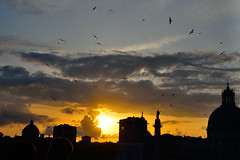 Sunset greetings  from Hitchcock in  Rome (greta colpaert) Tags: sunset sky cloud rome birds night nightscape outdoor dusk churches statues domes bej