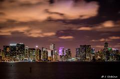 Miami Skline.jpg (~Ocho1~) Tags: city urban miami nighttime challengegamewinner