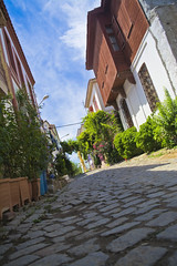 street in bozcaada (murattuzgel) Tags: street flower nikon trkiye cobblestone bozcaada anakkale d5200 turkeynikon