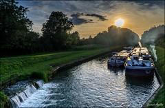Sur le canal (Laurent Asselin) Tags: canal eau pniche marne soleil