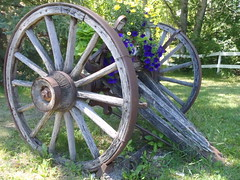 Rosebud Ramblings ... Growing Old  .. (Mr. Happy Face - Peace :)) Tags: yyc hff wagonwheel planter weathered vintage spokes pioneer art2016 quotes patriciabechthold