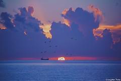 Sunrise @ South Beach!  (gusdiaz) Tags: sunrise amanecer miami south beach vacation summer agua mar arena oceano sol sun vacaciones hermoso beautiful colorful colorido boat bote ship