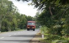 MSRTC AL heading towards pandarpur (gouravshinde94) Tags: msrtc bus ashok leyland latur kankavli