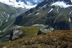 Plan Pato (bulbocode909) Tags: nature suisse vert neige rochers valais montagnes zinal planpato