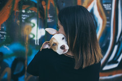 Dog (kristinabychkova2) Tags: dog photography people art camera reflex colors beautiful nikon 30mm soft sigma lens urban tones italy girl