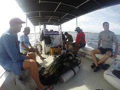 On to the next dive site!