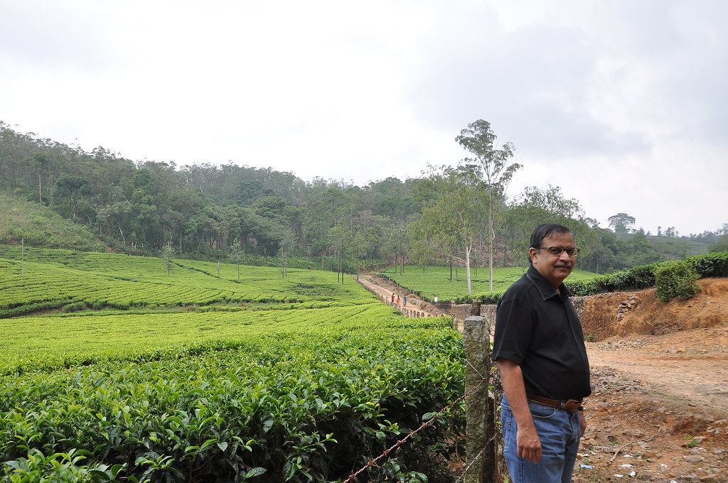 kerala agriculture Kerala is the only state in india having a well defined agriculture system starting from the grama panchayats this system is supposed to be the most effective structure for agricultural.