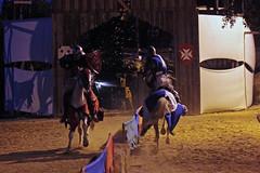 Joust (R.i.c.a.r.d.o.) Tags: bidos medieval market fair exhibition knights history clash battle recriation fun hit shield portugal dark