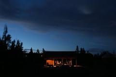 Snow Mountain Ranch (Tony Pulokas) Tags: snowmountainranch colorado granby night sunset people tree pine lodgepolepine summer tilt blur bokeh