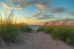 Dune Path at Sunset (PhotoJacko - Jackie Novak) Tags: lee06softndgrad leefilter dune beach sunset landscape lakemichigan goldenhour grass clouds sky millerbeach garyindiana nwi nature canon6d