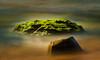 Interlude (Gerry Ligon) Tags: whalebeach mossyrock