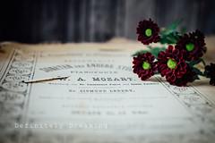 Mozart & Flowers (DefinitelyDreaming) Tags: vintagemusic sheetmusic charityshopfinds stilllife flowers floral tiny old tatty sonya99 lightroom